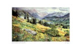 An Alberta Summer Limited Edition by Catherine Perehudoff