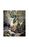 Rushing Water Collectable Print by Catherine Perehudoff