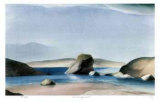Rock - Murray's Inlet Collectable Print by Norman Anthony Onley
