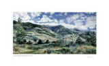 Near Red Rock Canyon Collectable Print by Catherine Perehudoff