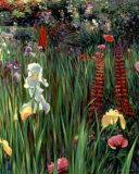 Spring Medley Revisited I Limited Edition by Greg Singley