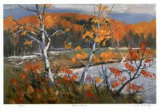 Autumn Sumac Limited Edition by Murray McCheyne Stewart