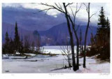 Early April - Loon  Lake Collectable Print by Murray McCheyne Stewart