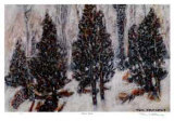 Snow Mist Collectable Print by Tom Mathews