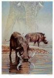 Tsavo Waterhole Limited Edition by R. V. Stanley