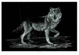 Wolf on Alert Limited Edition by Robert Pow
