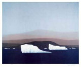 Artic Solitude Collectable Print by K. Kirby