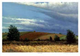 Wheat Field Limited Edition by Norman R. Brown