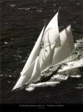 Veteran Boat Rally - Porto Cervo Art by Carlo Borlenghi