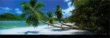Mahe, Seychelles Art by Harris Granville