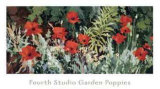 Fourth Studio Garden Poppies Posters by Douglas Atwill