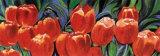 Tulips Posters by Alexandra Terramorsi