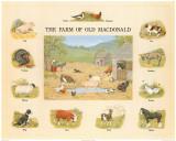 Farm of Old MacDonald Art Print
