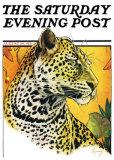 Leopard Prints by Jack Murray