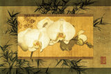 Bamboo and Orchids II Prints by Ives Mccoll