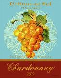 Chardonnay Affiche par Pamela Gladding