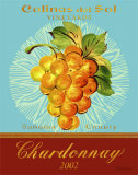 Chardonnay Posters by Pamela Gladding