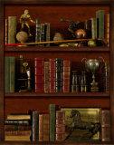 Librairie IV Art by  Pela