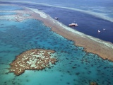 Aerial View of the Great Barrier Reef, Queensland, Australia Photographic Print
