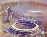 Busch Memorial Stadium - Composite Photo