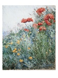 Poppies, Appledore Reproduction proc&#233;d&#233; gicl&#233;e par Childe Hassam
