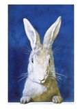 Magazine Cover Depicting a Rabbit by Frank S. Guild Giclee Print