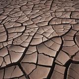 Deep Cracks in the Desert Photographic Print