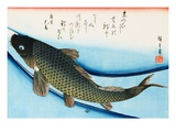 Swimming Carp Giclee Print by Utagawa Hiroshige