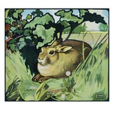 Illustration of a Resting Rabbit by Edwin Noble Giclee Print