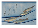 Rivertrout, from the Fish Series Stampa giclée di Ando Hiroshige