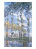Poplars (1881)