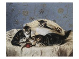 Kittens Up To Mischief Giclee Print by Horatio Henry Couldery
