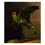 The Green Parakeet Giclee Print by Vincent van Gogh
