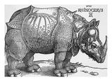 Rhinoceros Giclee Print by Albrecht Durer