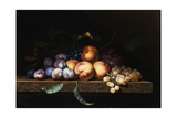 Peaches, Plums and Grapes on a Stone Ledge Giclee Print by Paul Liegois