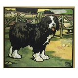 Illustration of an Old English Sheepdog by Edwin Noble Giclee Print