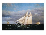 America's Cup Race Giclee Print by Francis Augustus Silva