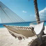 Hammock on a Beach Photographic Print