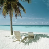 Palm Tree and Beach Chair Fotografie-Druck