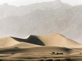 Dunes in the Desert Photographic Print