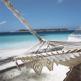 Hammock on a Beach Photographic Print