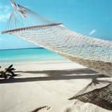 Hammock at the Beach Photographic Print