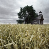A Dilapidated Building in a Field Photographic Print