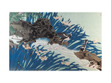 Little Forktails Giclee Print by Hsi-Tsun Chang