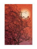 Red Sunset II Giclee Print by Baogui Zhang