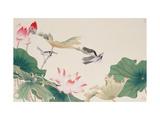 Birds by Lotus Pond Giclée-Druck von Hsi-Tsun Chang