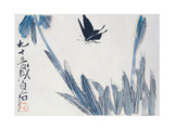 Dancing Butterfly Giclee Print by Baishi Qi