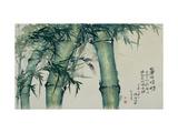 Green Bamboos Giclee Print by Haizann Chen