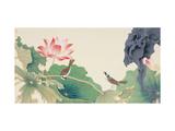 Lotus and Birds Reproduction procédé giclée par Hsi-Tsun Chang