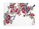 Apricot Blossoms Giclee Print by Baishi Qi
